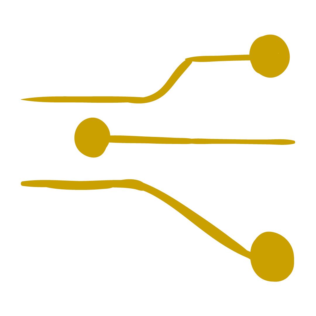 Control sistemático de operaciones